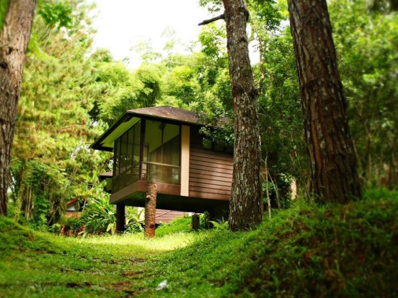Top Trending Hotels And Resorts In Davao According To Agoda